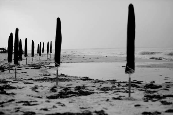 Wall Art - Photograph - Lonely Beach by Toni Hopper