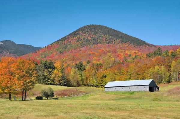 Photograph - Long Barn Autumn by Larry Landolfi