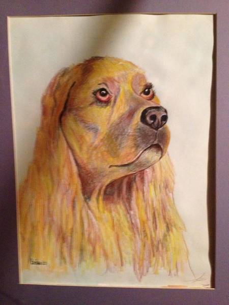 Benny Painting - Long-haired Dog by Benny Davis
