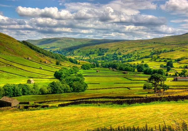 Wall Art - Photograph - Looking Down The Dale by Trevor Kersley