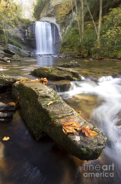 Wall Art - Photograph - Looking Glass Falls North Carolina by Dustin K Ryan