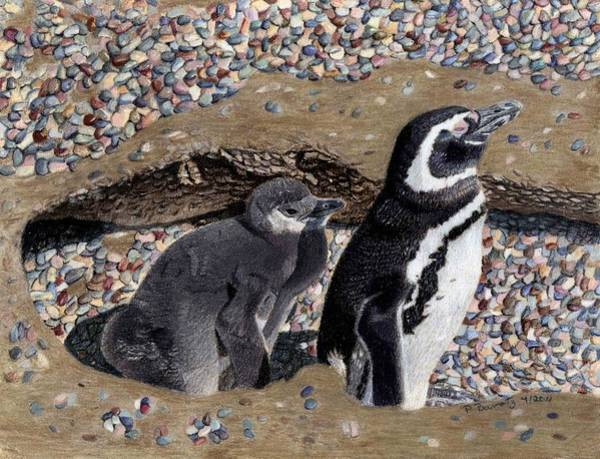 Painting - Looking Out For You - Penguins by Patricia Barmatz