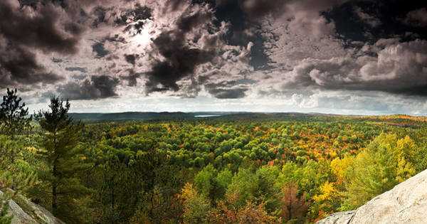 Algonquin Photograph - Lookout Trail by Cale Best