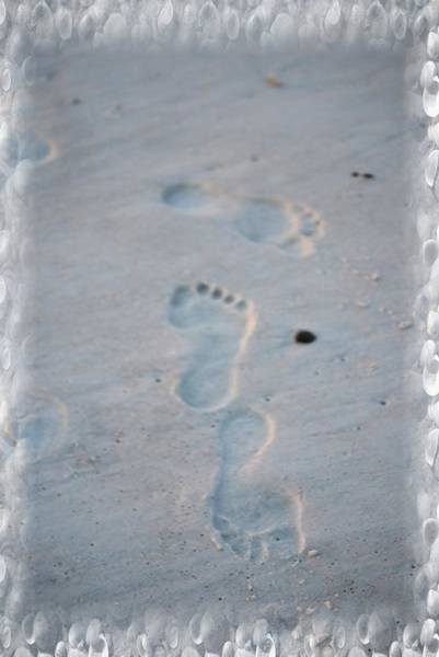 Photograph - Lost In The Sand by Judy Hall-Folde