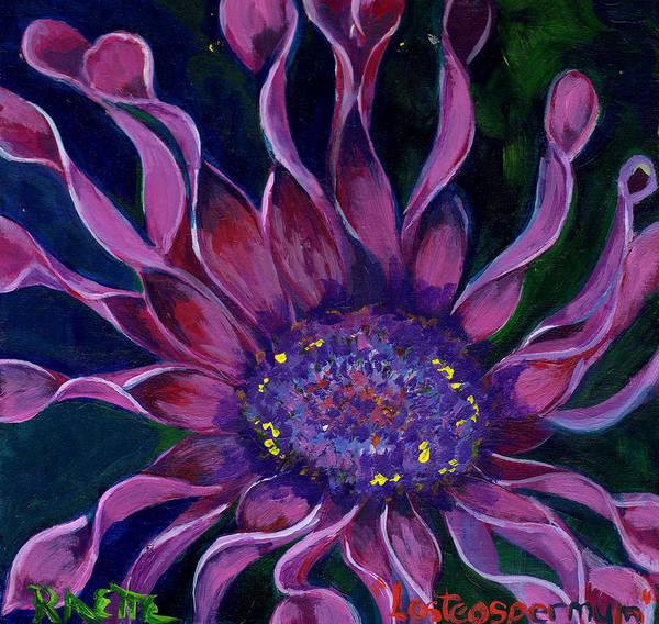Osteospermum Painting - Losteospermum by Raette Meredith