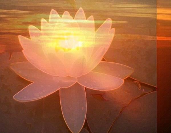 Digital Art - Lotus Light by Richard Laeton