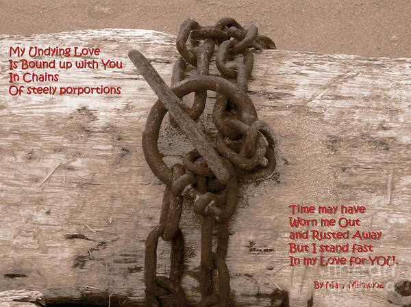 Photograph - Love Knot by Mary Mikawoz