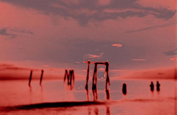 Photograph - Love On The Rocks by Randy Sylvia