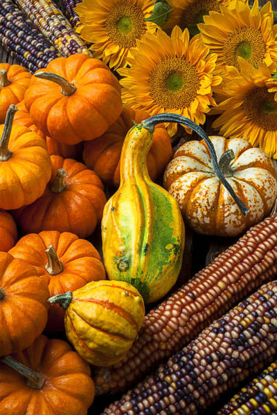 Gourd Photograph - Lovely Autumn by Garry Gay