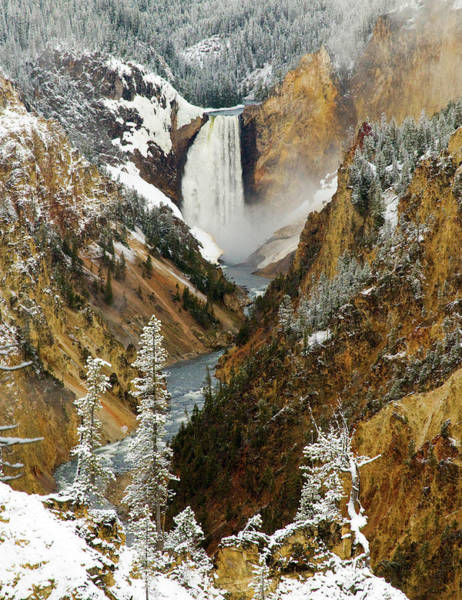 Photograph - Lower Falls by Steve Stuller