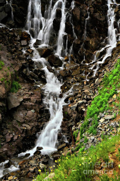Highway 12 Wall Art - Photograph - Lower Half Clear Lake Falls by Lana Trussell