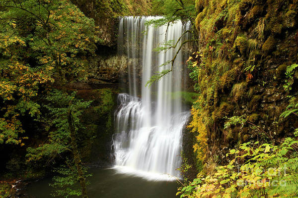 Photograph - Lower South Falls At Silver Falls by Adam Jewell