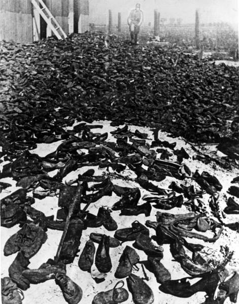 Concentration Camp Photograph - Lublin, Poland--shoes Worn by Everett