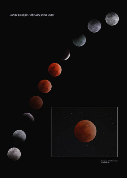Photograph - Lunar Eclipse 2008 by Dale J Martin