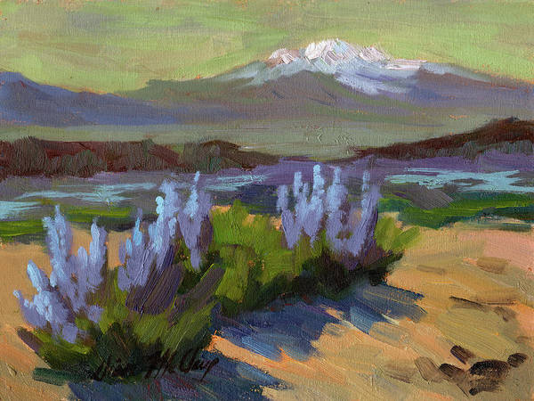 Desert Scene Painting - Lupine In Bloom by Diane McClary