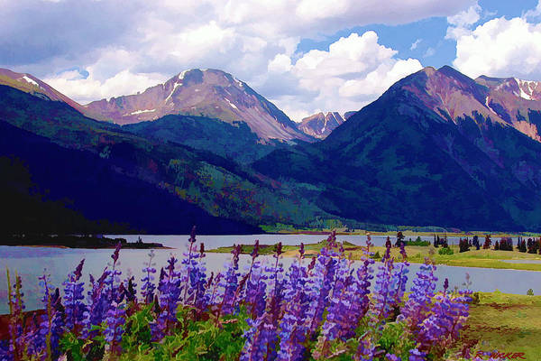 Lupine Lake Art Print