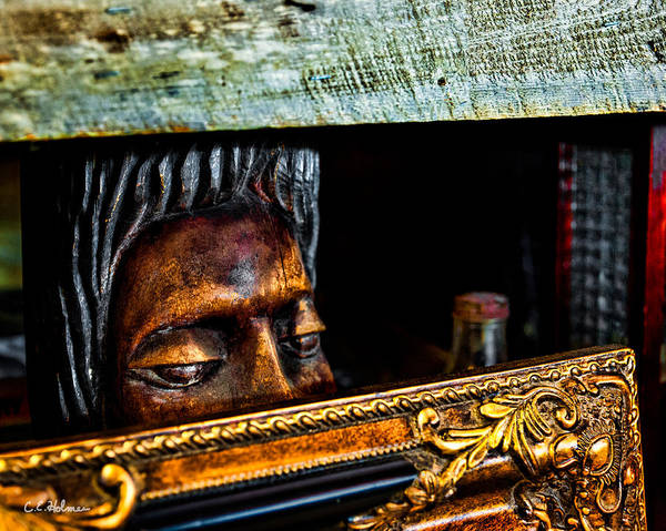 Photograph - Lurking by Christopher Holmes