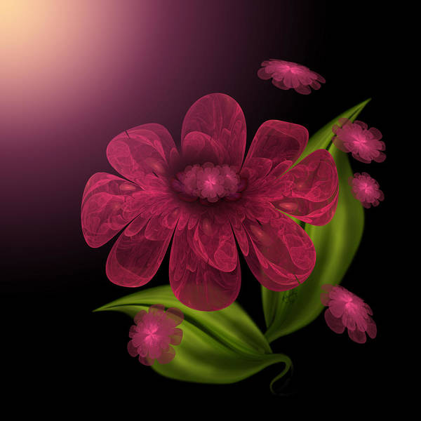 Digital Art - Luxurious Petals by Karla White