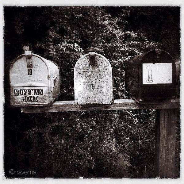 Monochrome Wall Art - Photograph - Mailboxes by Natasha Marco