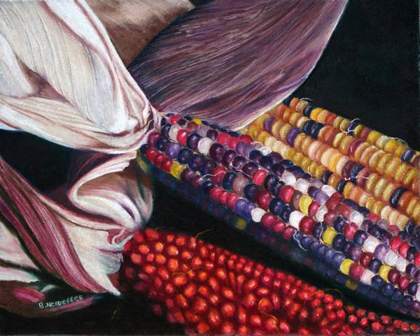 Indian Corn Drawing - Maize by Becky Neideffer