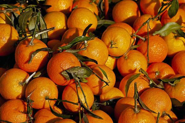 Mandarin Wall Art - Photograph - Mandarins by Joana Kruse