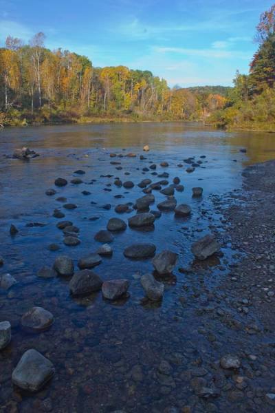 Wall Art - Photograph - Manistee River In Fall by Twenty Two North Photography