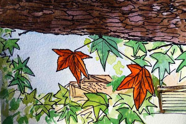 Sketch Book Wall Art - Painting - Maple Tree Sketchbook Project Down My Street by Irina Sztukowski