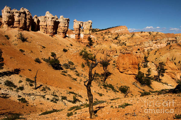 Photograph - March Of The Hoodoos by Adam Jewell