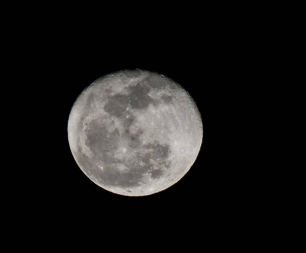 Photograph - March Waning Moon by Lara Ellis