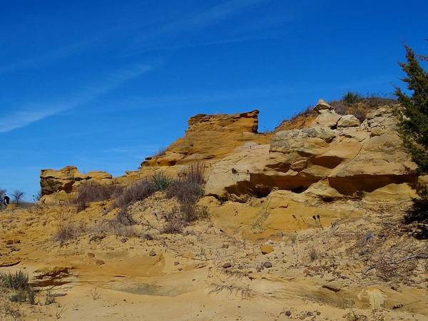 Photograph - Marion County Sand Canyon by Keith Stokes