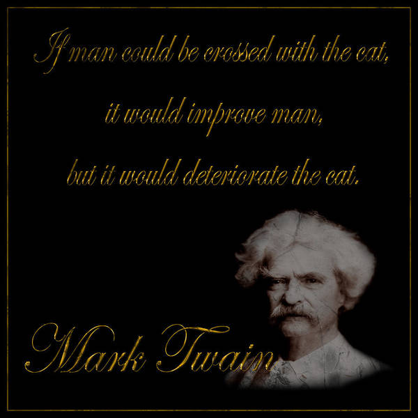 Photograph - Mark Twain 1 by Andrew Fare