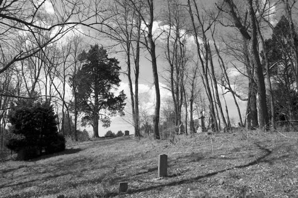 Grave Yard Photograph - Markers by Betsy Knapp