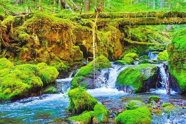 Marmot Photograph - Marmot Creek Waterfalls by Alvin Kroon