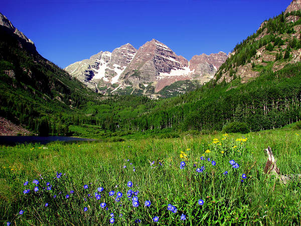 Photograph - Maroon Bells In The Summertime by Rick Wicker