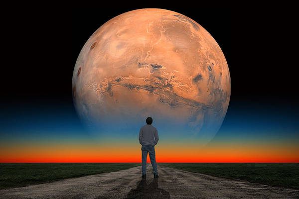 Photograph - Mars Man by Larry Landolfi