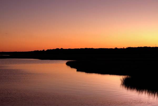 Photograph - Marsh Afterglow by Tom Singleton