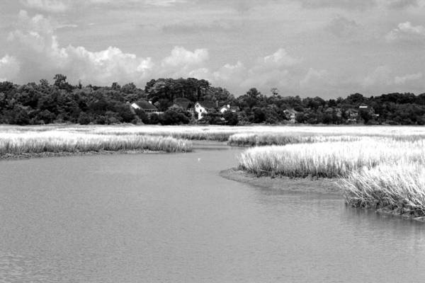 Photograph - Marsh Infrared by Bill Barber