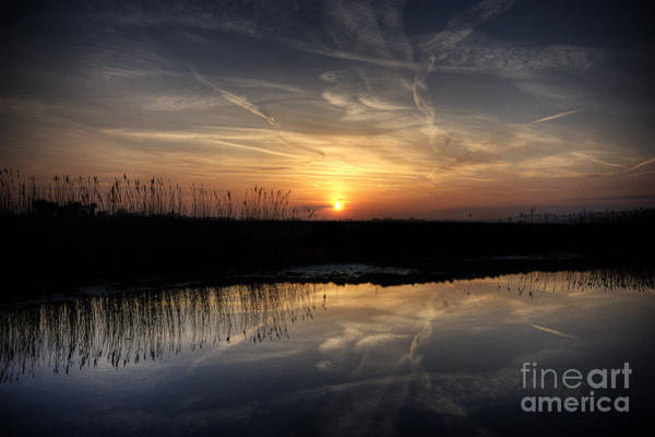 Wall Art - Photograph - Marsh Sunset by Lee-Anne Rafferty-Evans