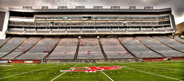 Photograph - Martin Stadium At Washington State University by David Patterson