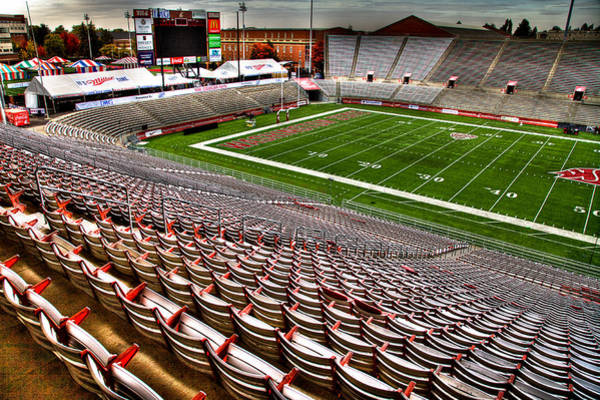 Photograph - Martin Stadium At Wsu by David Patterson