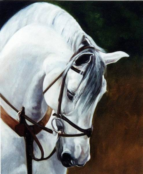 Rider Painting - Martingale by Janet  Crawford