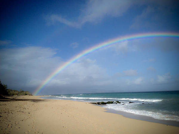 Wall Art - Photograph - Maui Rainbow by Patrick  Flynn