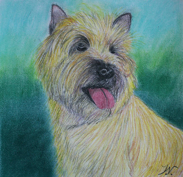 Pastel - Max by M Valeriano