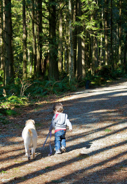 Dog Walker Photograph - Me And My Buddy by Ivan SABO