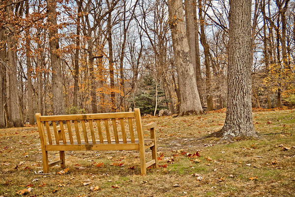 Photograph - Meditation At Valley Forge by Trish Tritz