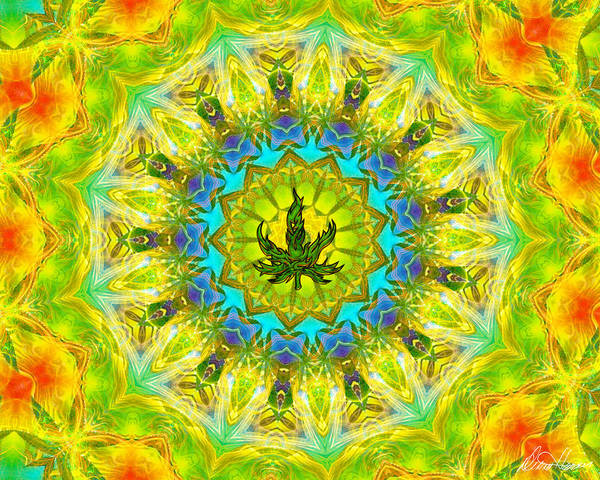 Digital Art - Mellow Yellow Mandala by Diana Haronis