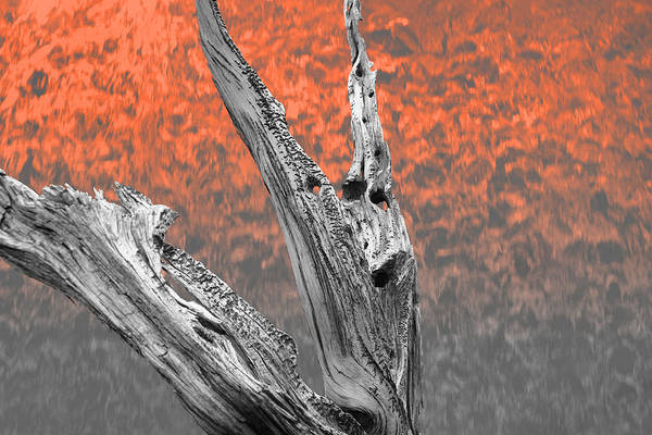 Photograph - Melting Ghosts by Mark  Ross
