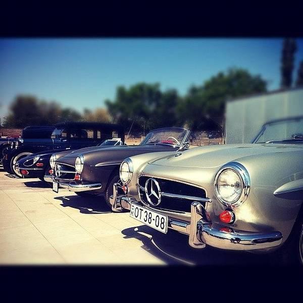 Jaguar Photograph - Mercedes by Gergely Maller