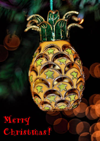 Photograph - Merry Christmas Pineapple by Dan McManus