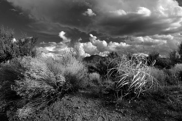 Photograph - Mesa Dreams by Ron Cline